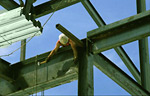 Steel Structures Primers and Coatings